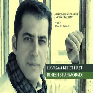 Binesh Shahmoradi – Havasam Behet Hast