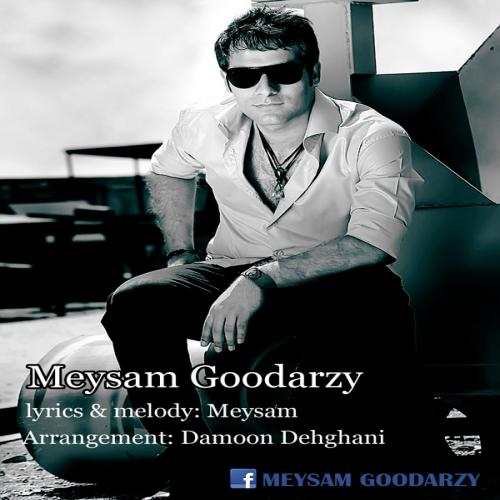 Meysam Goodarzy – Negarane Delam Nabash