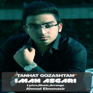 Iman Asgari – Tanhat Gozashtam