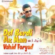 Vahid Faryad – Del Bordi Az Man